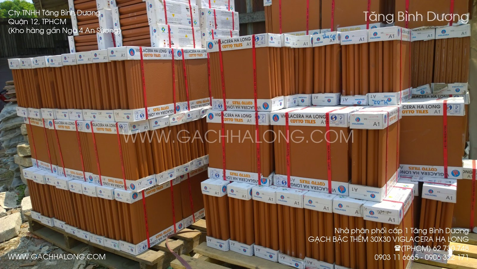 gach bac them 30x30 viglacera ha long