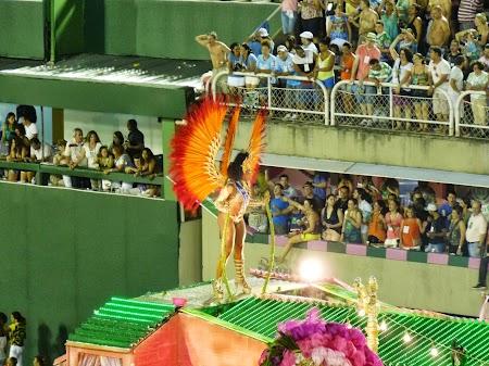 Carnavalul de la Rio:  Evident, tot barbat