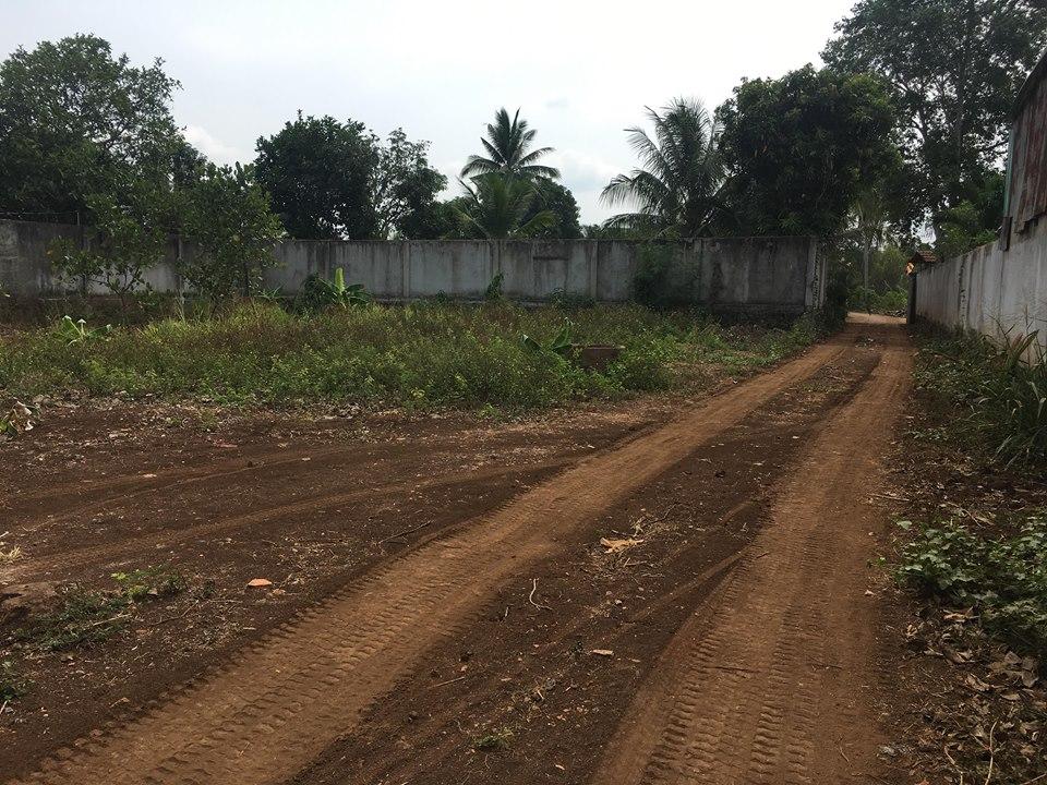 Bán đất vườn đường Hồ Thị Hương Thị xã Long Khánh 02