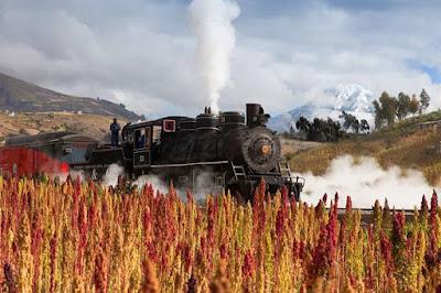 Un cultivo de Quinua una Locomotora a vapor y el Volcan Chimborazo