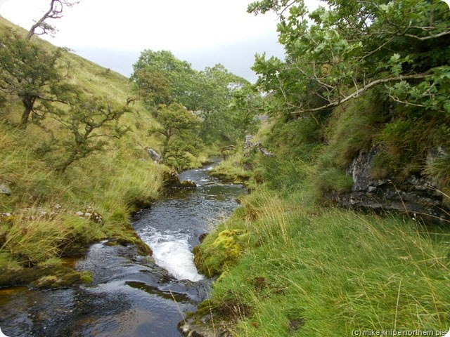 cowside beck