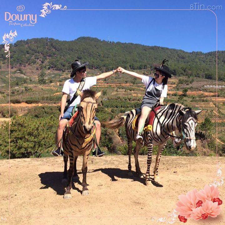 Hình ảnh dự thi của các cặp đôi sẽ được cập nhật tại album này.