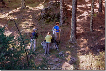 3337 Cueva Grande-Llanos Pez