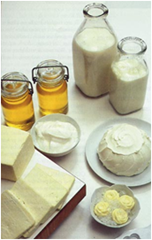 Milk products Cheese