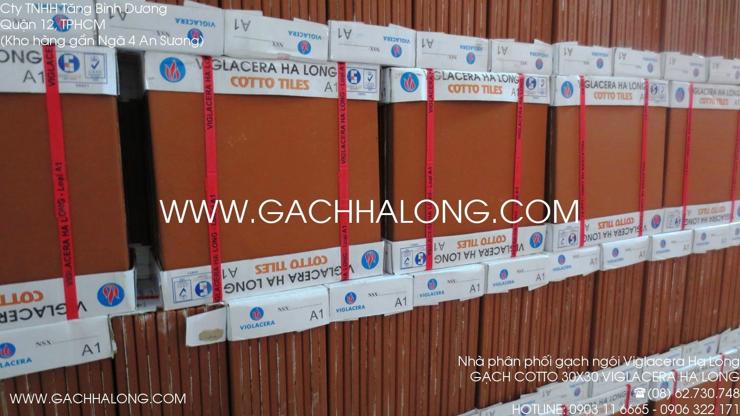 gach cotto 30x30 ha long
