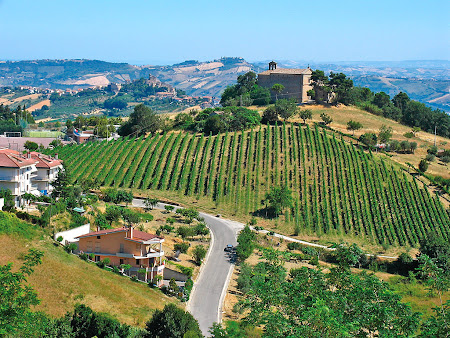 4. Ancona.jpg