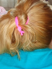 daughter wearing Maddyloo hair ties_3