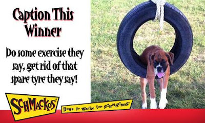 Congratulations to our Caption This Winner Jenny Ryan for coming up with this stitcharoo