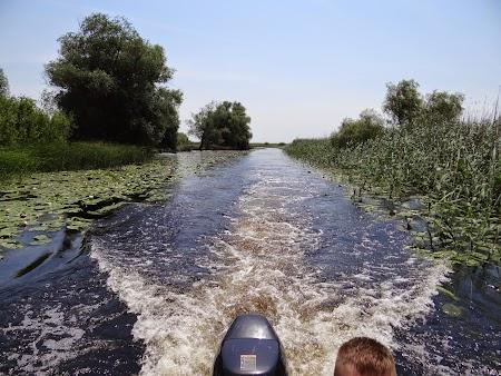 07. Delta Dunarii.JPG
