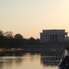 Lincoln Memorial by Patrick Jones - Buildings & Architecture Statues & Monuments ( cherry blossom festival, lincoln memorial, washington dc )
