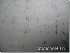 Стекло и зеркало  химического травления SMC-DSG-046