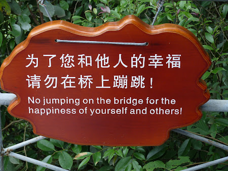 O traducere comica
