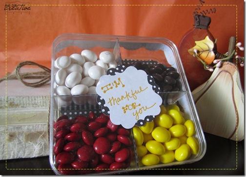 Gratitude Gift1