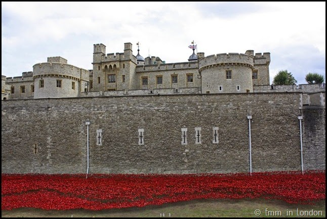 The White Tower and the poppies