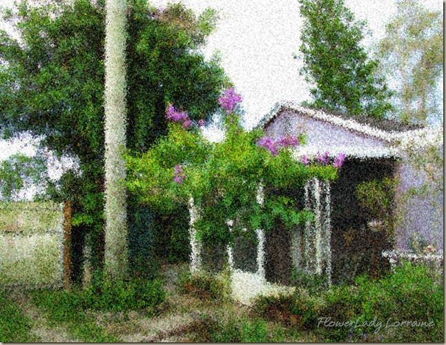 06-25-cottage-east