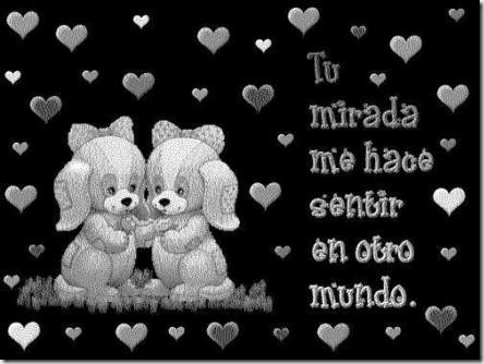eres el amor de mi vida (12)