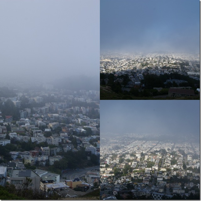Fog Collage