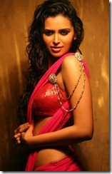 meenakshi_dixit_in_halfsaree