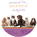 buy here pay here Texas dealer review by Avants Professional Pet Sitting LLC