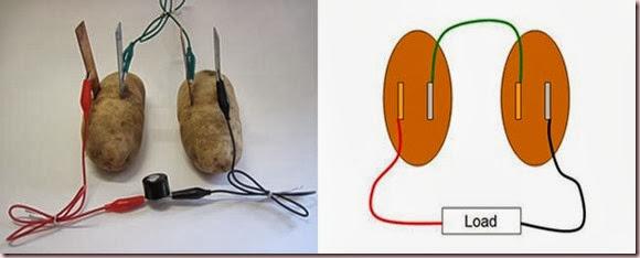 Potato battery gathering and recording of data