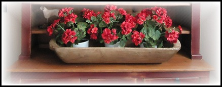 Trencher with geraniums