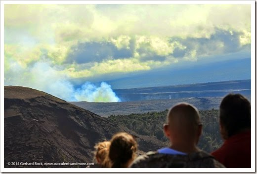 140724_HawaiiVolcanoesNP_0155