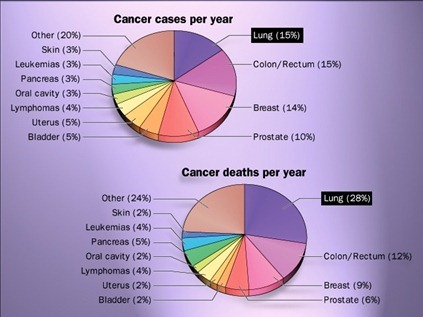 Cancer cases & death per year-lungs