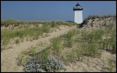 Provincetown 108