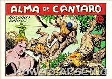 P00028 - Alma de Cántaro #28
