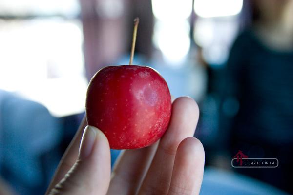 日本輕井澤小蘋果