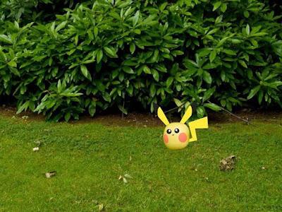 PokeMAOAM Gottacatchemall Pokemon