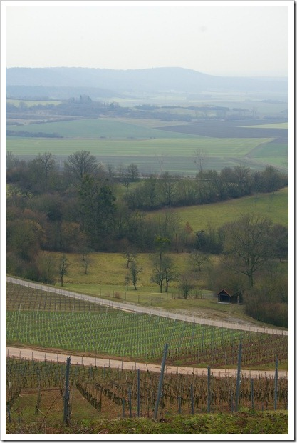 Blick von der Lage Burg Hoheneck über Ipsheim