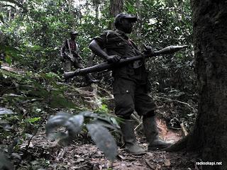 Des rebelles des FDLR dans la forêt de Pinga, dans l'Est de la République Démocratique du Congo, le 6 février 2009