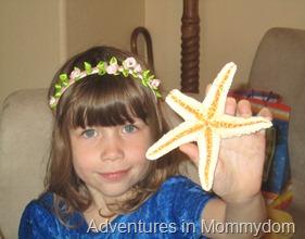 starfish elementary lesson