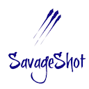 buy here pay here West Palm Beach dealer review by Savage Shot
