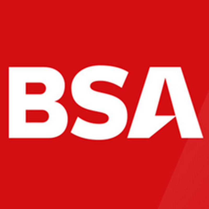 Online Advertising With BuySellAds (BSA): An Advertiser's View