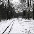 {w12} Betriebsbahnhof Wuhlheide