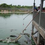 Тайланд 12.05.2012 6-00-12.JPG