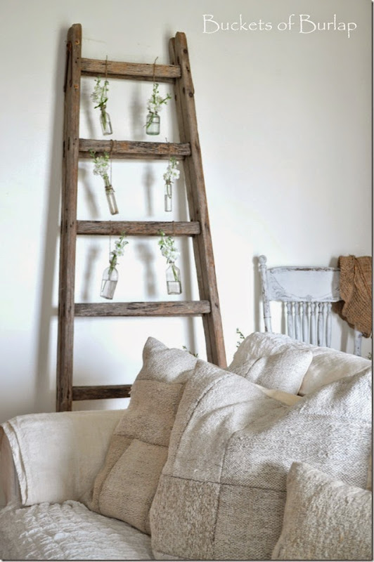 Spring Ladder 9