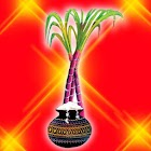 Pongal wallpapers icon