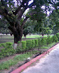 Mujibnagar-Memorial-Monument-Road.jpg