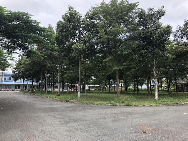 Đất nền Khu Dân Cư Thành Phố Tân An Long An  011