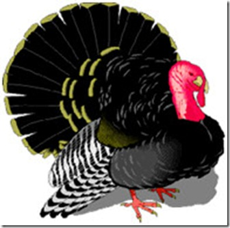 thanksgiving_turkey_classic