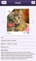 Screenshot of Petfinder