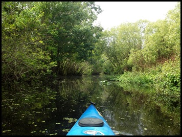 Paddle to Hontoon 012