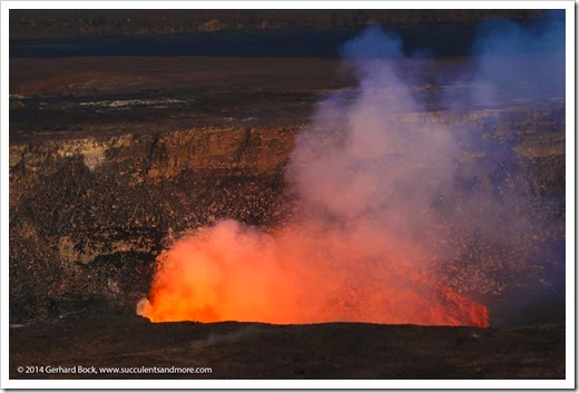 140724_HawaiiVolcanoesNP_0255