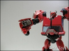 Cliffjumper (20)