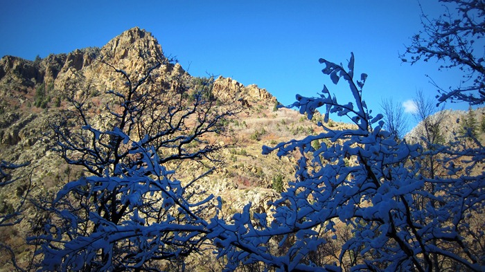 snowy and sunny in Big Cottonwood Canyon