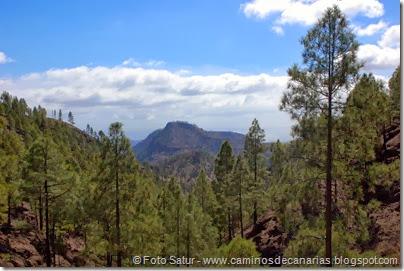 6929 Chira-Cruz Grande(Montaña Alta)