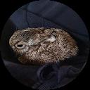 Ingo Schwarz-Gewallig
